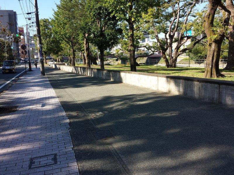 新屋敷清掃27.10 (1)